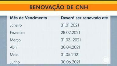 Detran-PI retoma renovação de CNH vencidas na pandemia; veja datas - Detran-PI retoma renovação de CNH vencidas na pandemia; veja datas