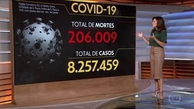 Brasil registra 206.009 mortes causadas pela Covid-19 - Veja os números atualizados da pandemia no Brasil, segundo o consórcio de veículos de imprensa.