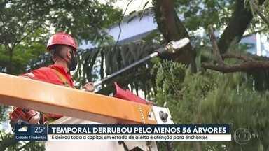 SP1 - Edição de terça-feira, 26/01/2021 - Crimes caem durante pandemia, mas o número de roubos não parou de subir em 2020. Detran e Polícia Civil fazem operação em centro de condutores de veículos. Número de mortes e de casos pela Covid-19 aumentam em São Paulo.