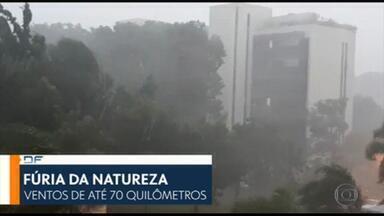DF1 - Edição de quarta-feira, 27/01/2021 - Temporal com ventos de 70 km/h causa estragos e assusta no Distrito Federal. A tempestade derrubou árvores, arrancou tendas e destruiu até uma parede do Parque da Cidade. E mais as notícias da manhã.