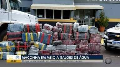 Polícia registra grandes apreensões de droga na região - Em apenas uma ocorrência foi mais de 1 tonelada de maconha.