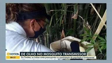 Com LIRAa alto, secretário de saúde de Timóteo fala sobre prevenção à dengue - Participação da população no combate ao Aedes aegypti é fundamental.