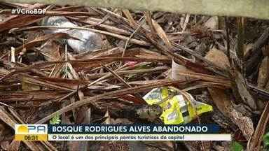 Visitantes reclamam do lixo acumulado dentro do Bosque de Belém - Visitantes reclamam do lixo acumulado dentro do Bosque de Belém
