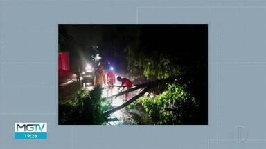 Chuva forte derruba árvores em Ipatinga - Bombeiros passaram a madrugada fazendo corte de árvores.