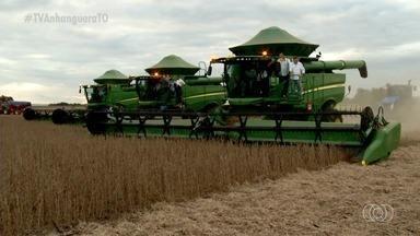 TO inicia colheita de soja e produtores esperam conseguir mais de 3 milhões de toneladas - TO inicia colheita de soja e produtores esperam conseguir mais de 3 milhões de toneladas