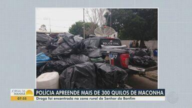 Dono de fazenda é preso com mais de 300 quilos de maconha no norte da Bahia - Caso ocorreu na zona rural do município de Senhor do Bonfim.