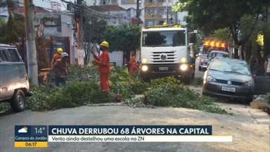 Árvore cai em cima de carro no centro de São Paulo - Acidente foi na Rua Conselheiro Brotero, consequencia da chuva.