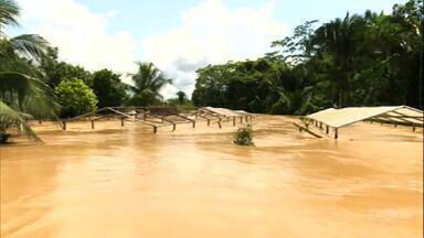 Cheia dos rios gera prejuízos a produtores do Acre - Nível do rio Iaco está cerca de 2 metros acima da cota de transbordamento, que é de 15 metros. Há perdas nas lavouras e pastagens estão encharcadas.
