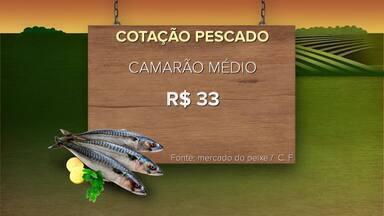 Confira a cotação do pescado para a primeira semana de março - Veja preços do dourado, salmão, camarão entre outros itens.