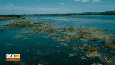 Falta de chuva na cabeceira do rio São Francisco prejudica estados nordestinos - A diminuição da vazão de água na hidrelétrica prejudica pescadores, ribeirinhos e o turismo da região.