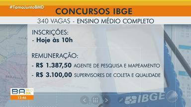 IBGE abre 340 vagas de emprego para Salvador e cidades do interior - Quem tem ensino médio completo pode se inscrever nesta quinta-feira, a aprtir das 10h.