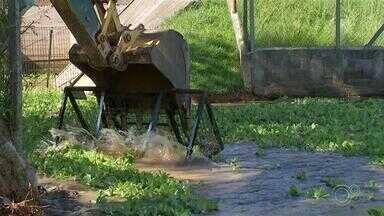 Saae termina serviço de remoção de algas na bacia de contenção em Sorocaba - O trabalho de remoção de algas da Bacia de Contenção no Jardim Abaeté em Sorocaba (SP) foi finalizado nesta quarta-feira (24). Segundo o Saae foram removidos o equivalente a 226 caminhões com as plantas aquáticas.