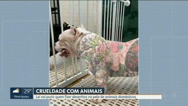 Lei vai punir quem fizer tatuagem em animais domésticos - Fotos dos animais com desenhos pelo corpo têm circulado pelas redes sociais. A lei prevê multa e prisão
