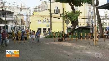 Árvore cai, danifica poste e deixa lojas sem energia no Centro do Recife - Caso ocorreu na madrugada desta quarta-feira (7).