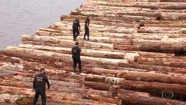 Ministério do Meio Ambiente e PF divergem sobre maior carga de madeira já apreendida no país - O ministro do Meio Ambiente, Ricardo Salles, foi ao Pará e defendeu a liberação da madeira. A Polícia Federal afirma que a madeira tem origem em desmatamento ilegal.