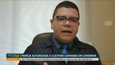 Sociedade Paranaense de Pediatria fala sobre uso medicinal da Cannabis - Família de Londrina recebe autorização pra cultivar Cannabis.