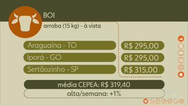 Veja os preços do boi gordo - Globo Rural mostra cotações do campo