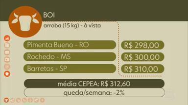 Confira o preço do boi gordo pelo país - Em Pimenta Bueno (RO), a arroba à vista foi vendida por R$ 298,00 na sexta-feira (16). Em Rochedo (MS), por R$ 300,00. Em Barretos (SP), por R$ 310,00. A média CEPEA fechou a semana em R$ 312,60, uma queda de 2%.