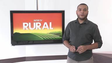 Veja a edição do Inter TV Rural deste domingo, 25/04/2021 - Programa traz as novidades do campo que movimentam a economia no interior do Rio.