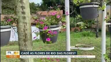 Prefeitura de Rio das Flores diz que mudas e plantas de jardins da cidade foram furtadas - Coordenador de meio ambiente alerta que a prática é crime federal.