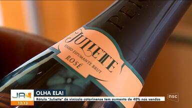 Sucesso do Big Brother impulsiona vendas de vinho catarinense - Sucesso do Big Brother impulsiona vendas de vinho catarinense