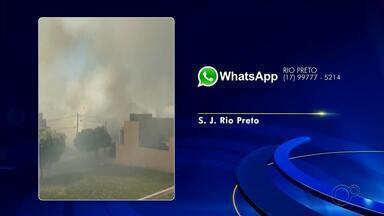 Moradores de Rio Preto fazem reclamações sobre queimadas - Moradores de São José do Rio Preto (SP) enviaram reclamações à TV TEM sobre queimadas nos bairros Jardim Arroyo e Auferville.