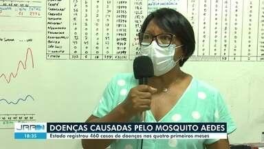 Roraima registrou 460 casos de doenças provocadas pelo Aedes - Total foi registrado em quatro meses. Segundo a Vigilância em Saúde, houve redução das notificações, mas crescimento da proliferação do mosquito transmissor da doença.