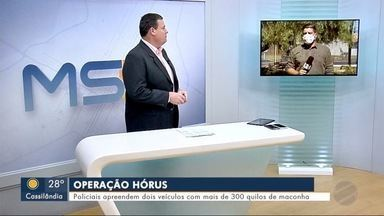 Policiais apreendem dois veículos com mais de 300 quilos de maconha - MS1 Dourados