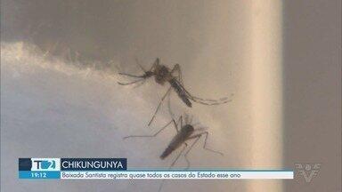 Baixada Santista registra quase todos os casos de chikungunya do Estado de SP - Santos, Guarujá e São Vicente são as cidades com mais infectados.