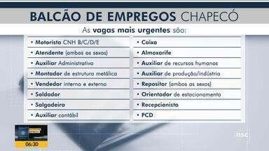 Chapecó tem mais de 100 vagas de emprego abertas - Chapecó tem mais de 100 vagas de emprego abertas