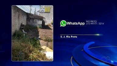 Moradores do noroeste paulista fazem reclamações sobre problemas nas cidades - Moradores do noroeste paulista enviaram reclamações à TV TEM sobre problemas nas cidades. Veja o posicionamento das autoridades responsáveis.