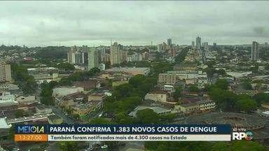 Paraná confirma mais de 1,3 mil casos de dengue - Estado também notificou mais de 4,3 mil casos, segundo a Sesa.