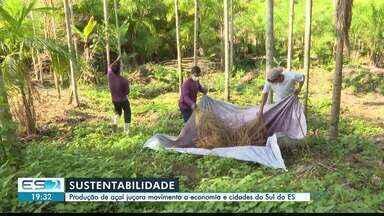 Rio Novo do Sul tem exemplo de preservação da natureza sem comprometer a produtividade - Assista a seguir.