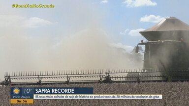 Rio Grande do Sul produz mais de 20 milhões de toneladas de soja - Assista ao vídeo.