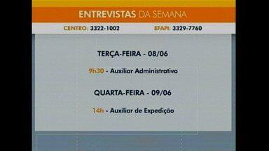 Há vagas - Balcão de Empregos com 716 oportunidades em Chapecó