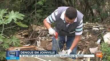 Joinville registra três mortes e 10 mil casos de dengue - Joinville registra três mortes e 10 mil casos de dengue