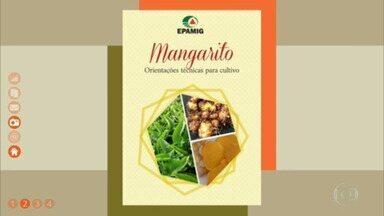 Aprenda a cultivar o mangarito, hortaliça que parece uma batatinha - Baixe a cartilha da Epamig.