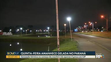 Quinta-feira (01) amanhece gelada no Paraná - Sensação térmica no começo da manhã é de apenas 4 graus em São José dos Pinhais.