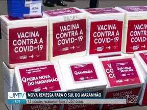 Cidades do Sul recebem doses da vacina contra Covid - 13 cidades receberam neste sábado (10), 7.350 doses de imunizantes contra o novo coronavírus.