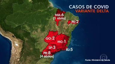 Ministério da Saúde identifica 27 casos da variante Delta do coronavírus no Brasil - O Ministério da Saúde já identificou 27 casos da variante Delta do coronavírus no Brasil. Cinco pessoas morreram. São Paulo e Rio de Janeiro confirmaram transmissão comunitária da variante.