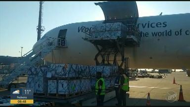 Covid-19: Pfizer entrega mais 2 milhões de doses da vacina - Dois voos com a carga chegaram no último domingo (1) no Aeroporto de Viracopos, em Campinas (SP).