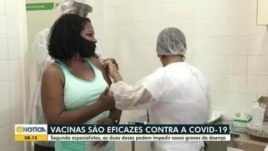 Especialistas confirmam a eficácia das vacinas contra a Covid-19 - Para maior eficácia, é preciso que todos se imunizem.