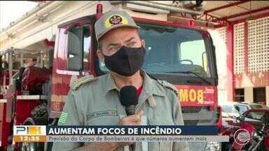 Bombeiros falam sobre aumento dos focos de incêndios no Piauí - Bombeiros falam sobre aumento dos focos de incêndios no Piauí