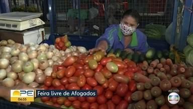 Preço do tomate pesa na cesta básica - Dica é pesquisar preço e economizar no momento de cozinhar
