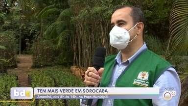 TEM Mais Verde acontece neste sábado em Sorocaba - O TEM Mais Verde acontece neste sábado (14) em Sorocaba (SP), no estacionamento da prefeitura. Esta é uma ação da TV TEM em prol do meio ambiente.