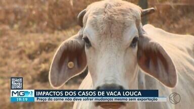Carne: segmento em Divinópolis não aposta em preço baixo com queda na exportação - Após confirmação do mal da vaca louca em um frigorífico de Belo Horizonte, tanto os criadores de gado de corte, como os donos de açougues, não acreditam que preço pode baixar no mercado interno.