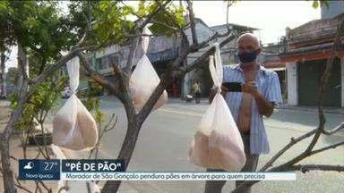 'Pé de pão': árvore em São Gonçalo recebe doações a quem tem fome - Placa explica como funciona: ''Se precisar, pegue. Se puder, coloque'. Projeto criado por pintor de carros vem ganhando adeptos. Ideia surgiu após sobra de um um café da tarde na oficina.