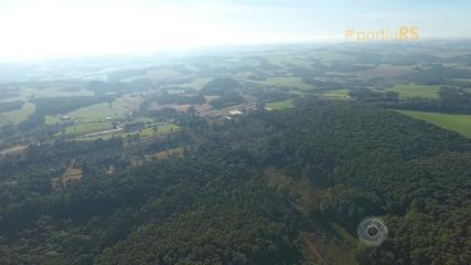 #partiuRS: conheça a Floresta Nacional no RS