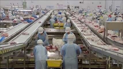 Operação em frigoríficos revela que carne vencida e moída com papelão era vendida no país