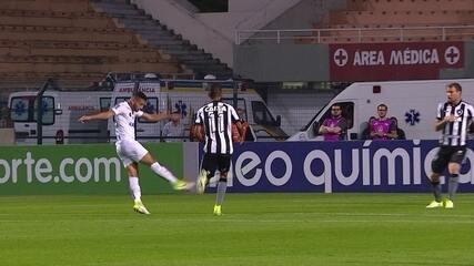 Confira lances de Helton Leite pelo Botafogo, contra o Santos
